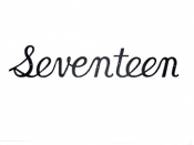 Montague Script House Number - Seventeen
